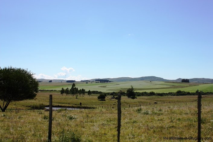 5118-Field-with-great-Potential-to-Build-andor-use-as-Farmland-2594