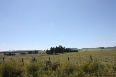 5118-Field-with-great-Potential-to-Build-andor-use-as-Farmland-2595