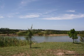 5156-The-Perfect-Land-to-Build-and-Close-to-La-Barra-2688