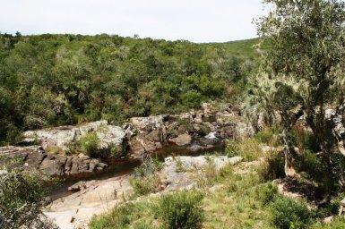 5160-Land-of-Small-Mountain-Farm-in-the-Aigua-Area
