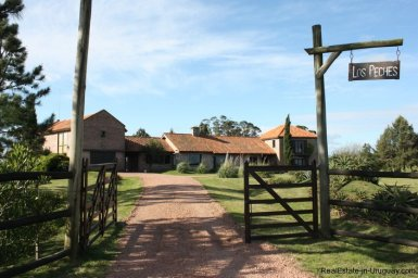 4264-Pretty-Traditional-Style-Ranch-near-Jose-Ignacio-3090