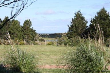 4264-Pretty-Traditional-Style-Ranch-near-Jose-Ignacio-3091