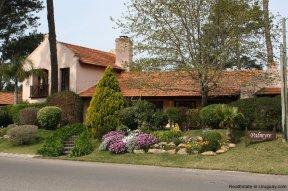 4558-Punta-Home-in-the-Heart-of-San-Rafael-3271