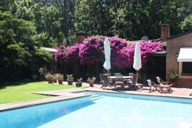 Pool and Deck Mini Estate in Rincon del Indio
