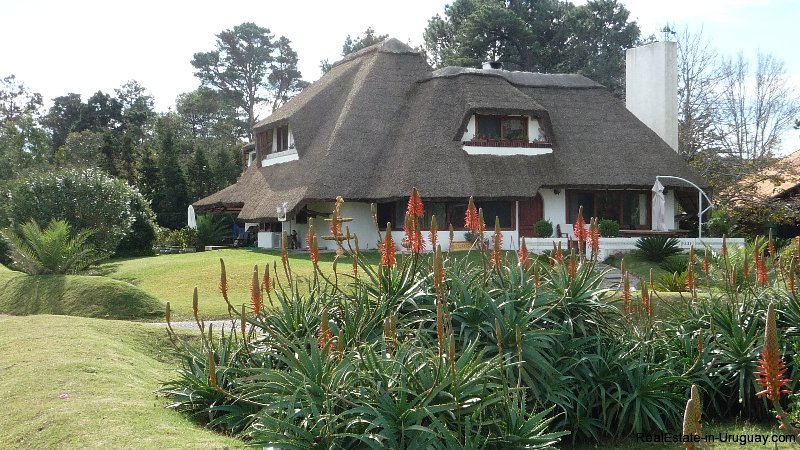 0001RA-Charming-Uruguayan-Style-Home-for-Long-Term-Rent-in-Solana-Beach-3996