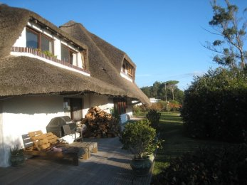 0001RA-Charming-Uruguayan-Style-Home-for-Long-Term-Rent-in-Solana-Beach-3997