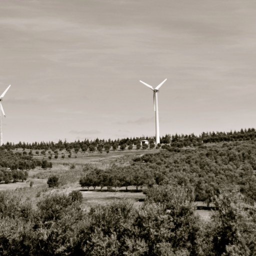 Wind Farms in Uruguay