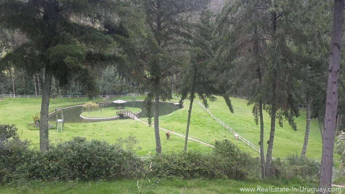 Outside Hacienda Amaguana Valle de los Chillos, Ecuador