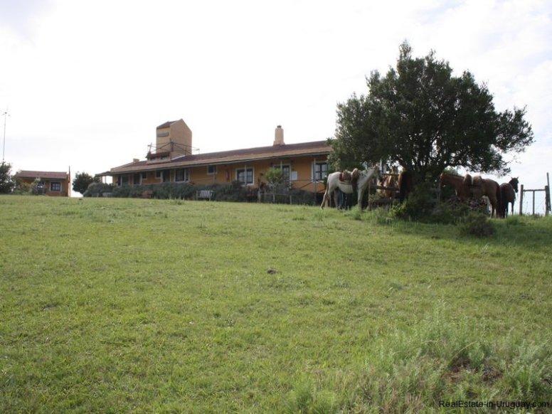 5538-Little-Posada-on-100-Hectare-Land-in-Minas-4400