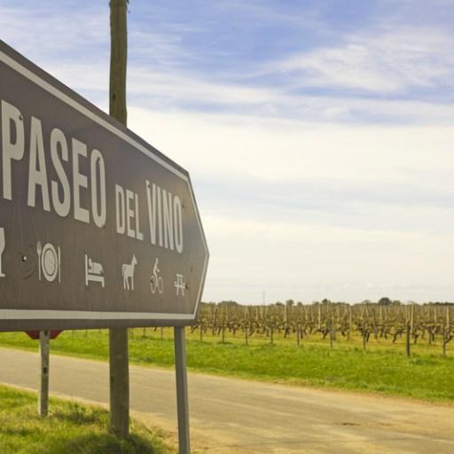 Uruguay top wines