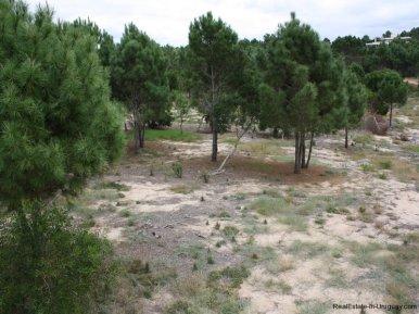 5570-Land-in-Laguna-Escondida-Jose-Ignacio-4456