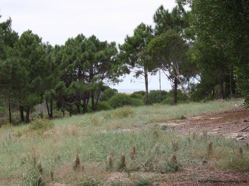 5570-Land-in-Laguna-Escondida-Jose-Ignacio-4457