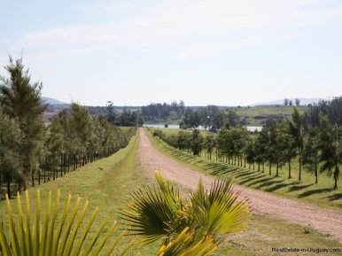 4099-Entrance-of-Lake-Side-Cabin-at-Laguna-del-Sauce-Punta-del-Este