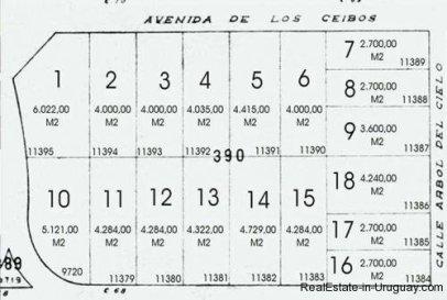 4607-Division-of-7-Ha-Ocean-Frontline-next-to-Punta-Ballena-Punta-del-Este