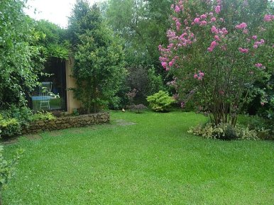 1511-Backyard-of-Large-Home-in-Jardines-Montevideo
