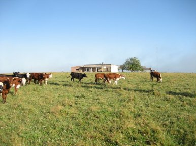 5406-Land-of-Historic-Ranch-near-Cabo-Polonio