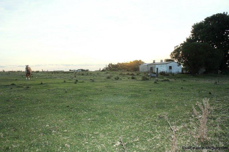 5603-Haus-on-Agro-Field-San-Jacinto-near-Montevideo