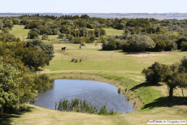 5680-Pond-of-Estancia-in-Jose-Ignacio
