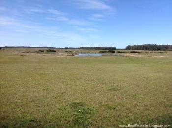 1000 Ha Chacra near Cabo Polonia - Land with Pond
