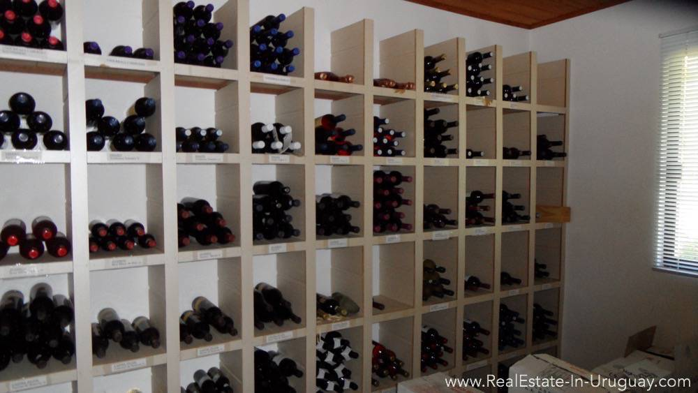 Established Business Opportunity-Wine Cellar Storage