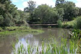 The Wetlands of Punta Del Este, Maldonado, Uruguay