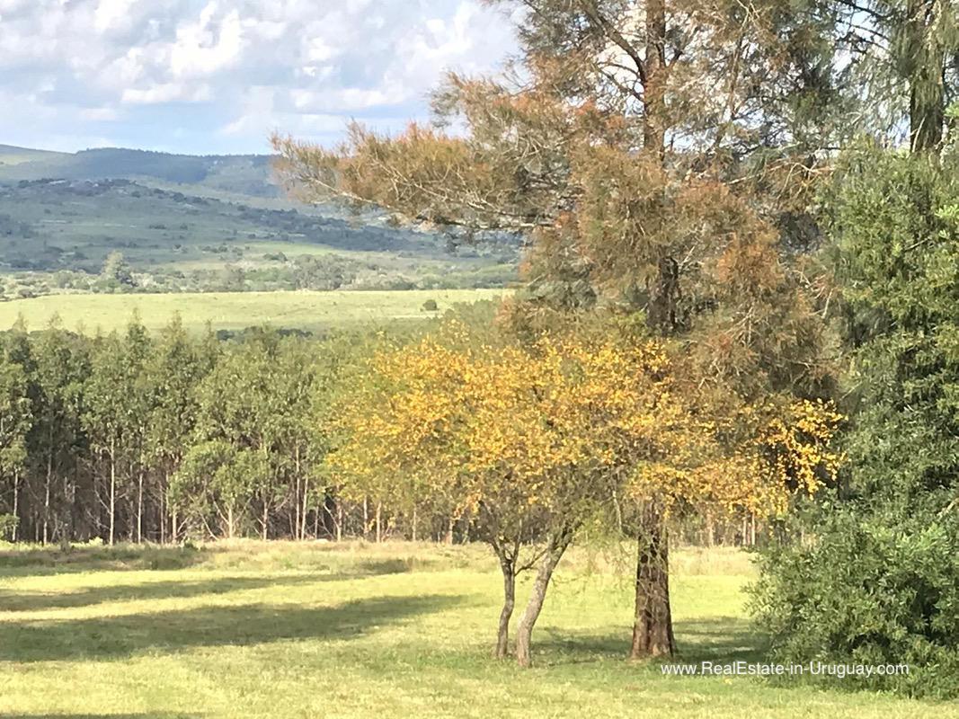 Modern Sustainable Bio Farm House in Pueblo Eden