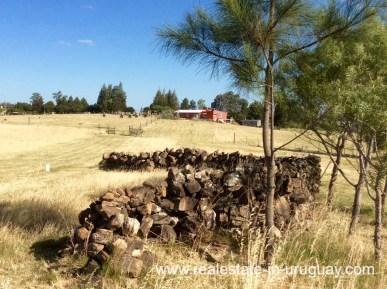 Stone wall of Modern Sustainable Bio Chacra in Pueblo Eden New Built