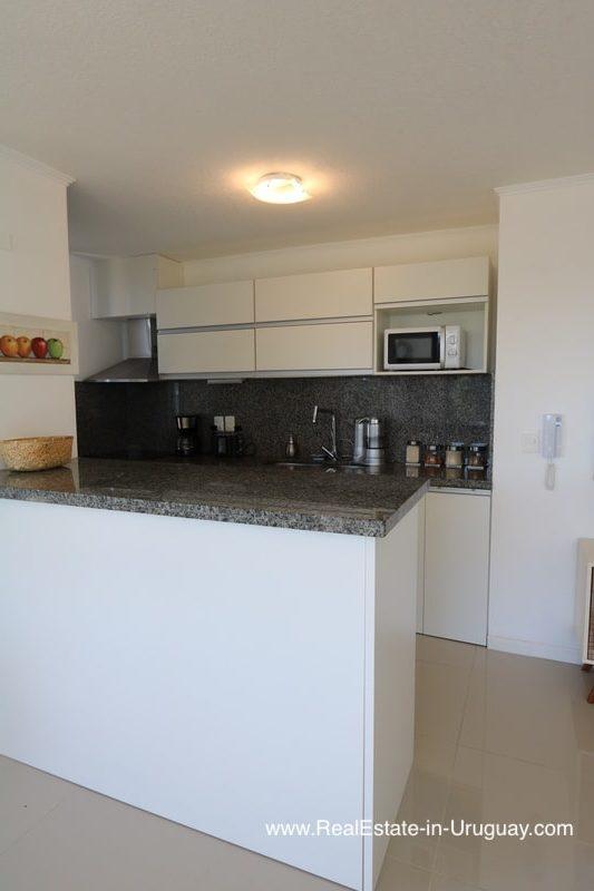 New Apartment for Rent on Roosevelt Avenue in Punta del Este