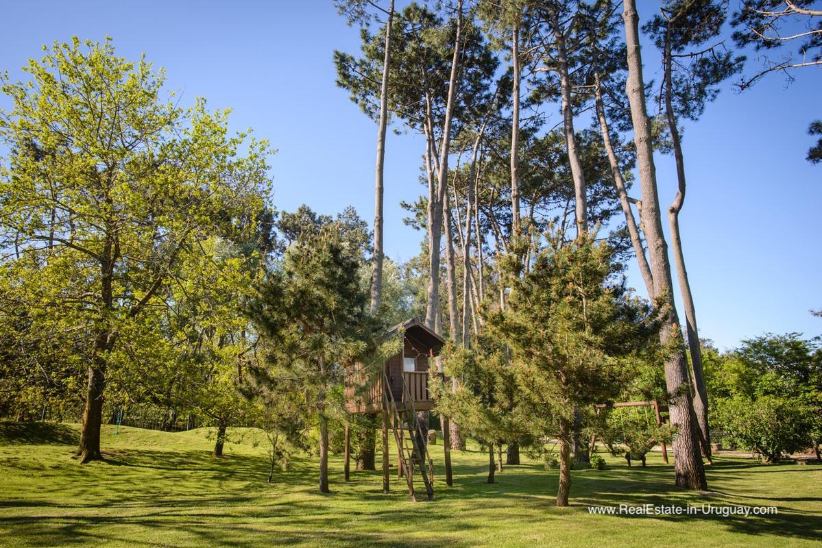 Large Family Home in Best Area of El Golf in Punta del Este