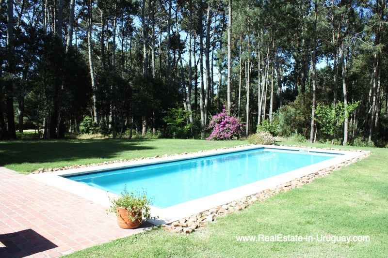 Pool of Well Built Home in Parque Burnett in Punta del Este