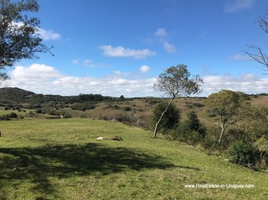 Views of 115 Hectares with a Restored old Building in Garzon
