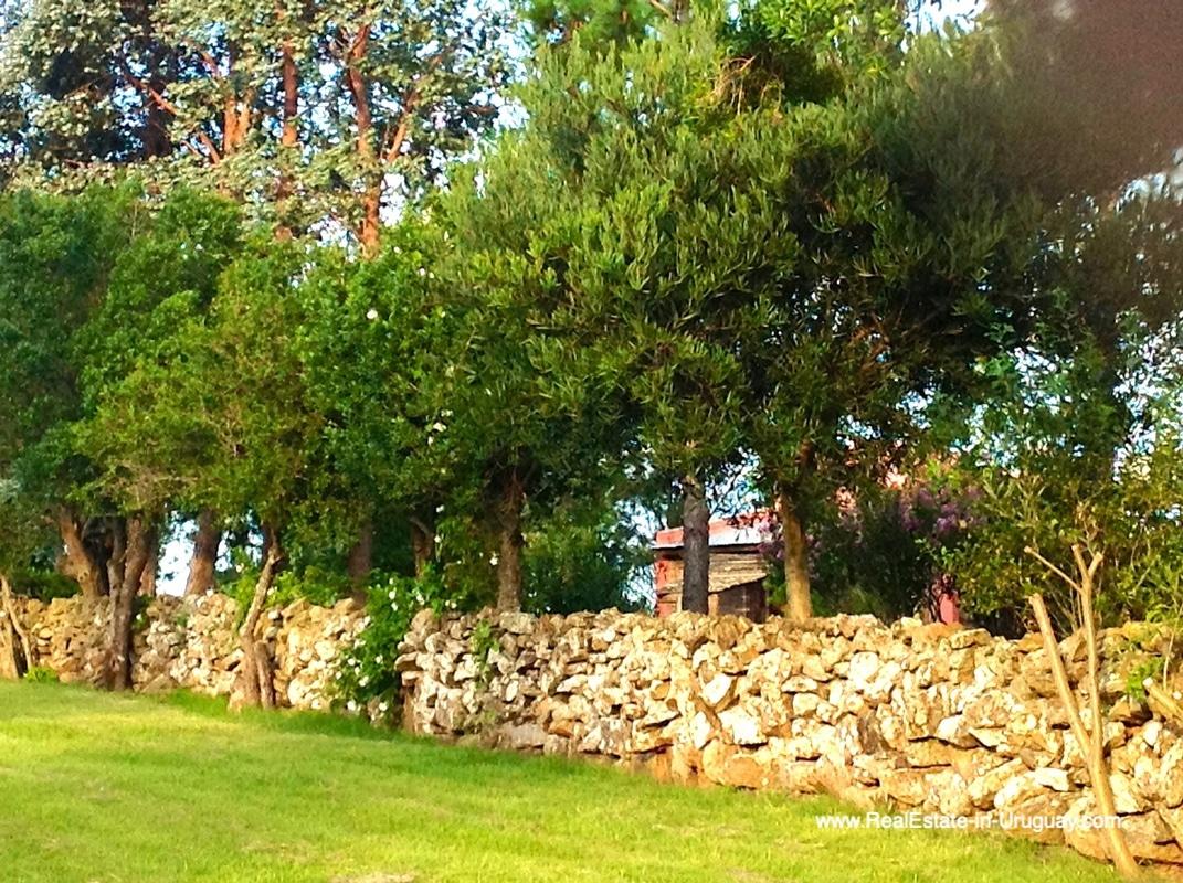 Stone Wall of Farm House in the Pueblo Eden Area