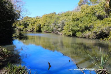 River of 97 Hectares Farm near Pueblo Eden