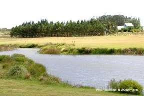 Pond of Wonderful Ranch with a Vineyard behind La Barra and Manantiales