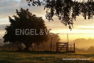 Sunset on Farm with Organic Garden near Wineries in Canelones