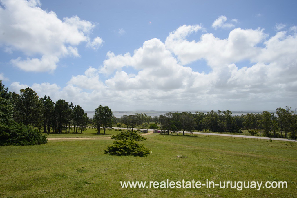 Garden of Large House with Views to Laguna del Sauce by Punta del Este