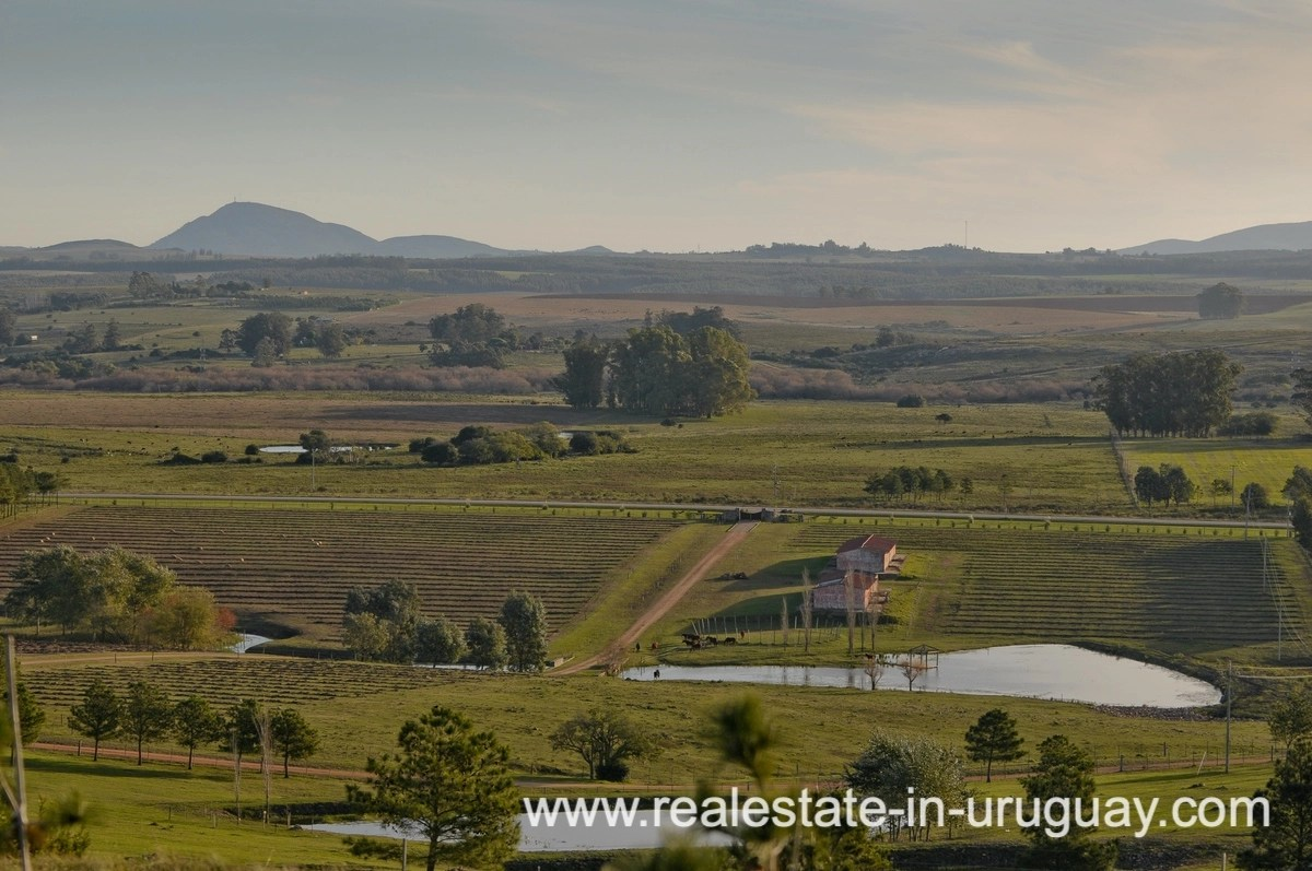 Views of Spectacular Farm situated on a Hill by Laguna del Sauce