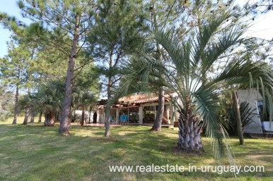 6497 Countryside Property between Jose Ignacio and Garzon - House Back