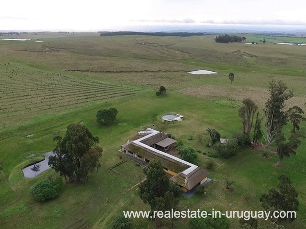 Aerial View of Farm with 95 Hectares just 15 Minutes from Jose Ignacio