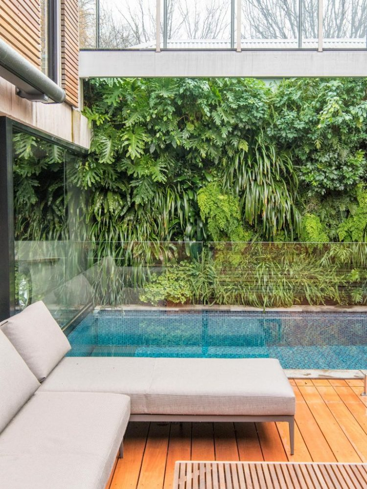 9 Awesome Balcony Garden Ideas And Tips Plants For Your Balcony