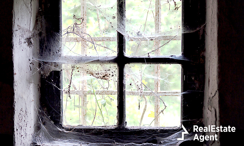 Old house window infested with spider webs