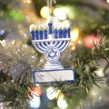 Hanukkah Bush ornament