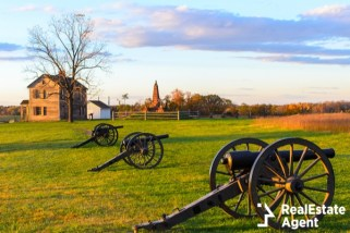 historic henry house cannons