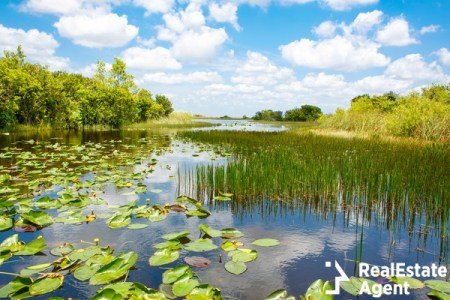 airboat ride at everglades river