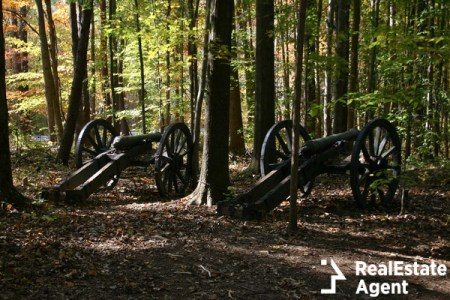 Revolutionary War cannons at battleground