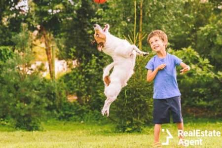 Happy kid looking at jumping dog