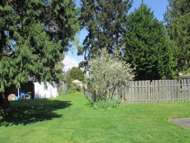 561-644875 – Backyard-640