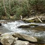Fires Creek 015