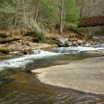 Fires Creek 053