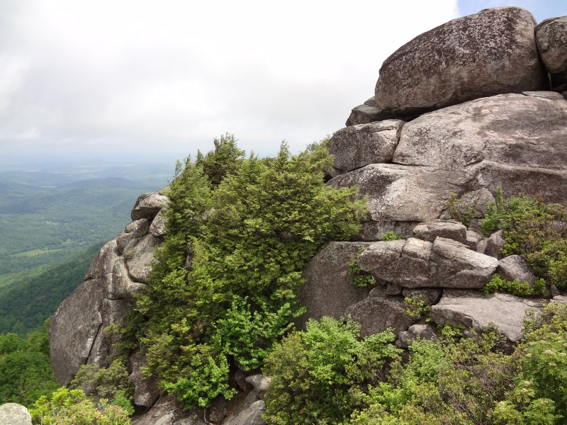 Old Rag Peak Elevation, Rock Scramble